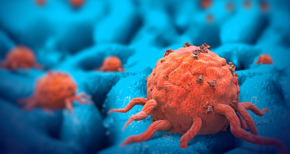 New Immunotherapy Process Could Teach the Immune System to Destroy Tumors