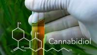 Cannabidiol Could Be Used as a Heroin Addiction Treatment