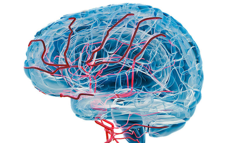 How Can You Diminish The Risk of Dementia
