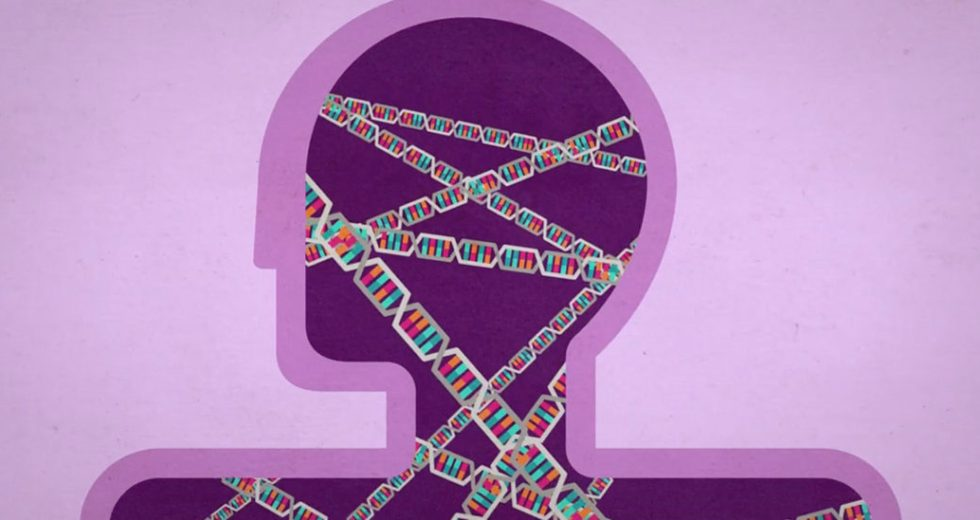 Genetics Influences The Risks Of Autism