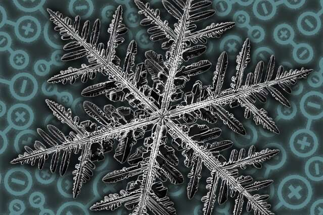 Fractal Patterns in a Quantum Material? What Scientists Say