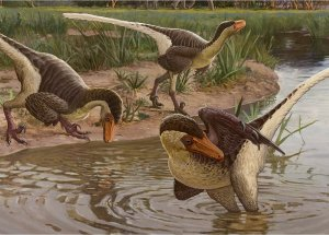 Feathered Dinosaur Fossils Were Found In New Mexico
