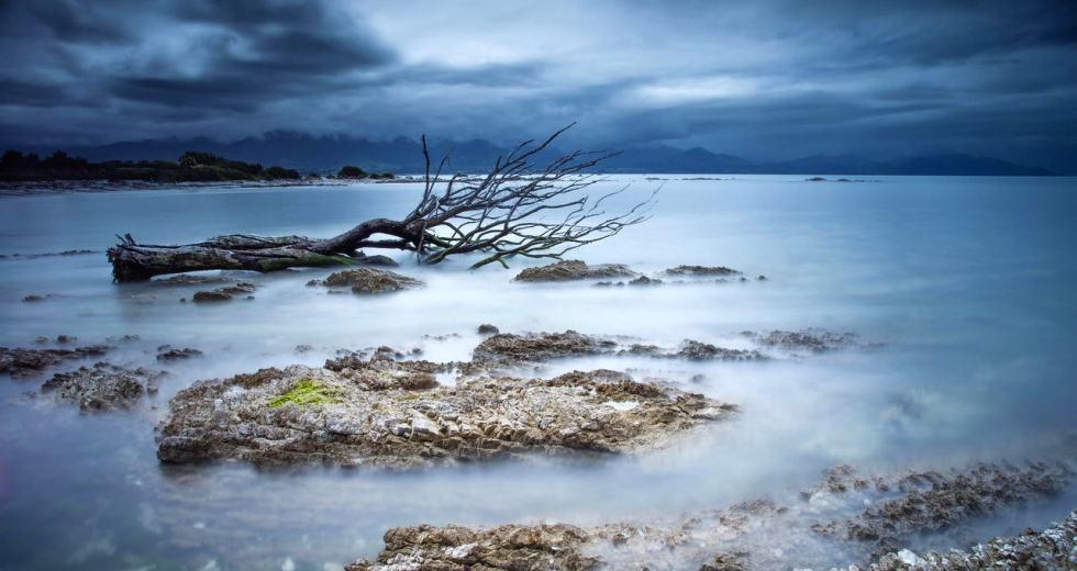 Ocean Deoxygenation Led To A Massive Extinction 440 Million Years Ago