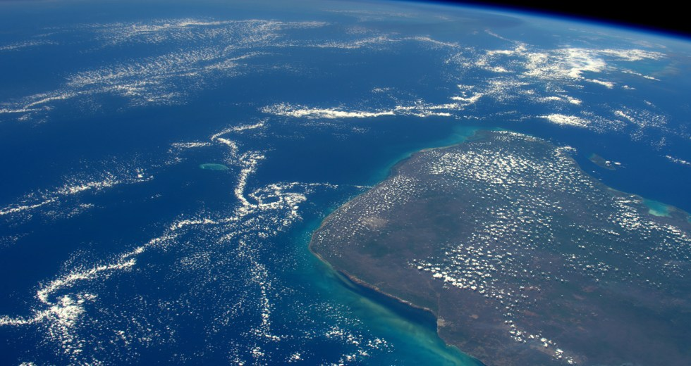 Chicxulub Collision: the Ending of Existing Life or the Beginning of a New Era?