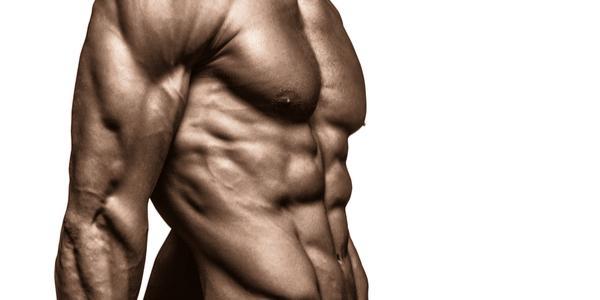 SARMs in bodybuilding