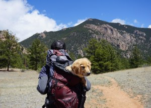 9 Things to Always Keep in Your Hiking Backpack