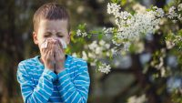 9 Types Of Indoor Allergy Solutions To Try Before Spring