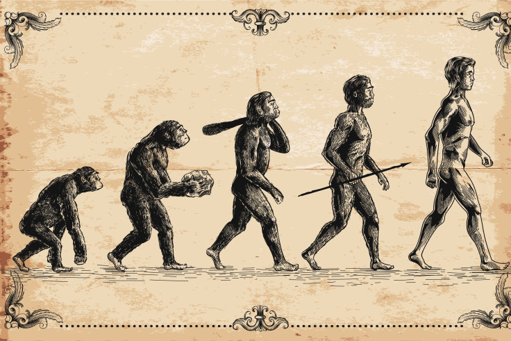 Nesher Ramla Homo – The Newly Discovered Ancient Human Species Of Israel