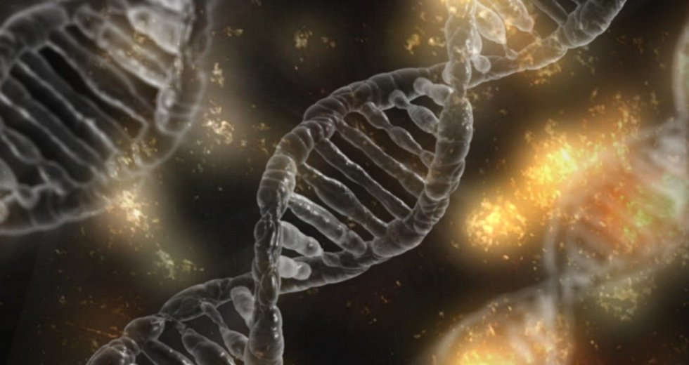 Mysterious DNA Found in Mud is Seemingly Capable of Assimilating Genes From Different Organisms