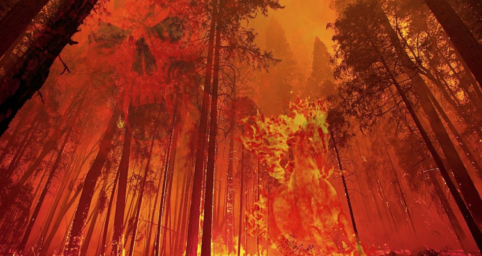 Wildfires From the US and Canada are Pushing Resources to the Limit – 1.2 Million Acres Burned