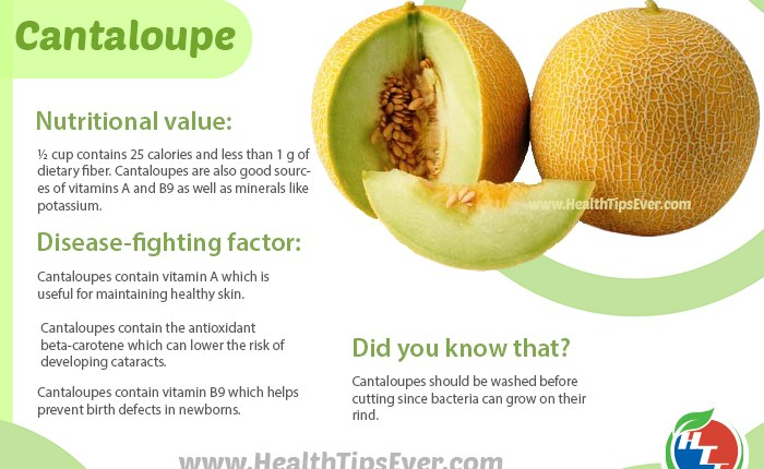Cantaloupe Health Benefit With Infographics Health Tips Ever Magazine It seems to me you have larger problems if you are concerned about he calories in a cantaloupe. cantaloupe health benefit with