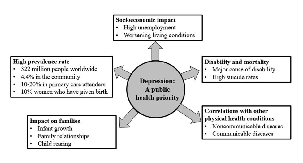 Depression: a public health priority