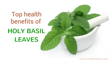 Top health benefits of holy basil leaves which you should know