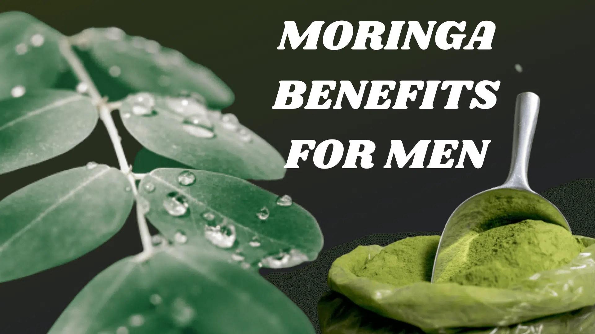 moringa benefits for men