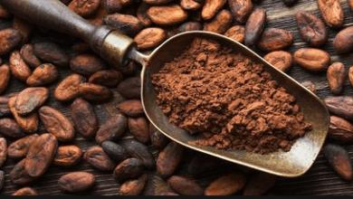 Photo of ما علاقة الكاكاو بضغط الدم وما هي فوائد مشروب الكاكاو ؟