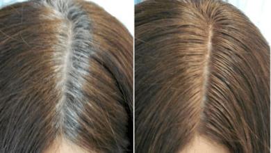 Photo of كيف تتخلصين من الشعر الابيض باستخدام زيت الشعير