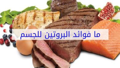 Photo of فوائد البروتين للجسم واهم الاطعمه التي تحتوي عليه