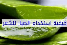 Photo of فوائد الصبار لتكثيف الشعر