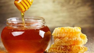 Photo of تعرفي على مميزات العسل وفوائده  للشعر
