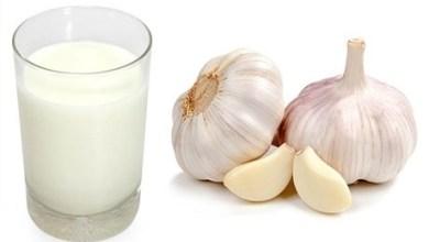 Photo of فوائد الحليب مع الثوم