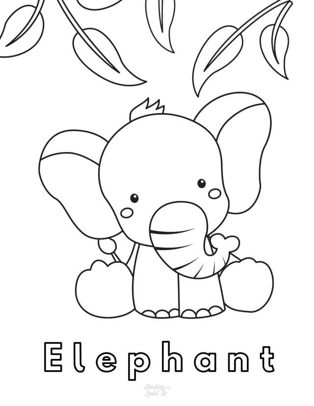 Free Printable Elephant Coloring Pages -Easy Elephant Pictures to