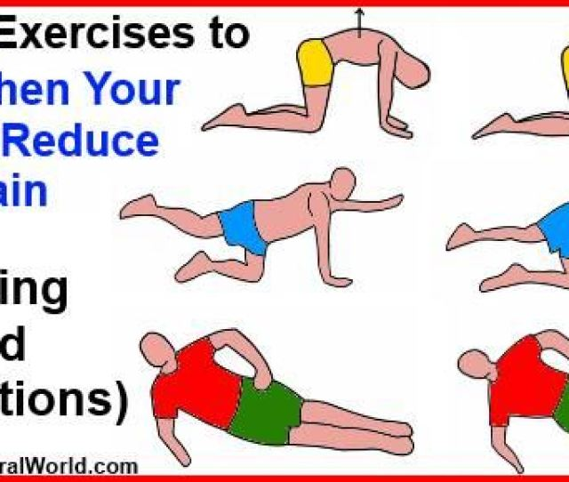 Top  Exercises To Strengthen Your Back And Reduce Back Pain Including Detailed Illustrations