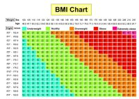 Are You Obese, Overweight? Use This BMI Calculator Chart ...