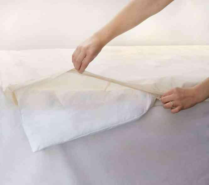 Allergy Duvet Comforter Covers New Organic 09241