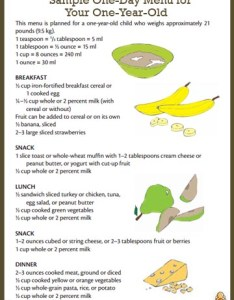 oz   ml also sample menu for  one year old healthychildren rh