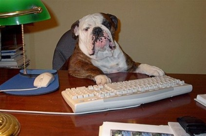 Dog Father at Computer