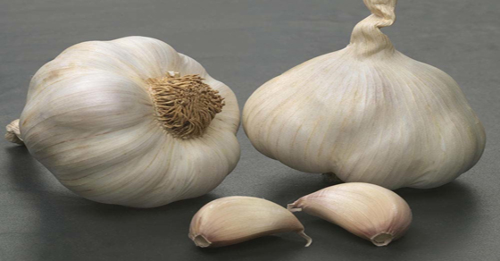 how-to-fix-the-one-mistake-most-people-make-when-cooking-with-garlic
