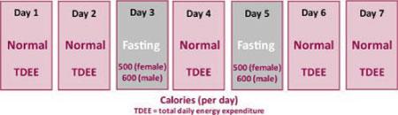 neuroscientist-shows-fasting-brain-big-pharma-wont-study1
