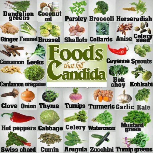 Foods that regulate candida