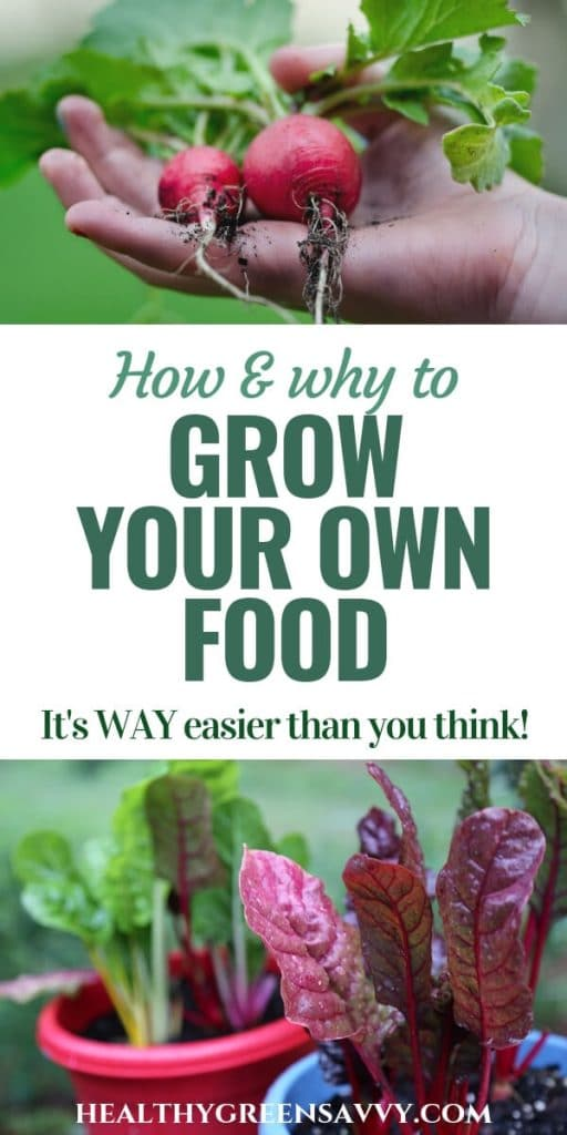 Growing Your Own Food Is Easier Than You Think