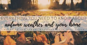 How to use Fall Weather to Improve the Health of Your Home