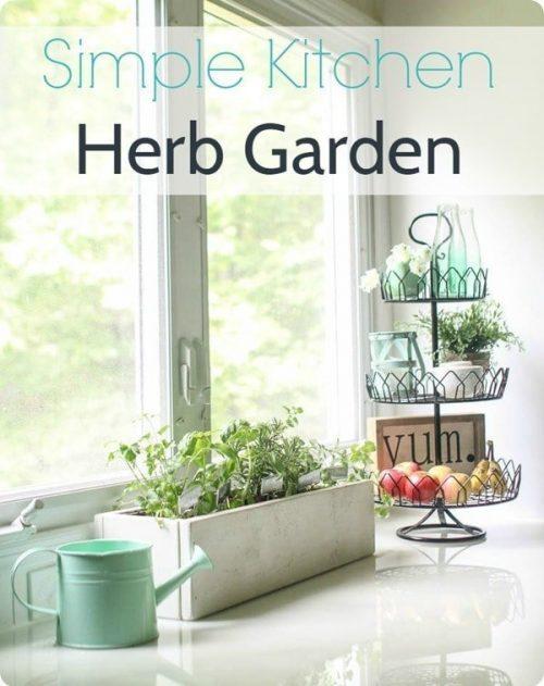 simple-kitchen-herb-garden