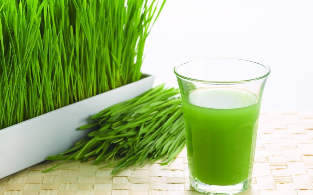 Healthy Components of Wheatgrass