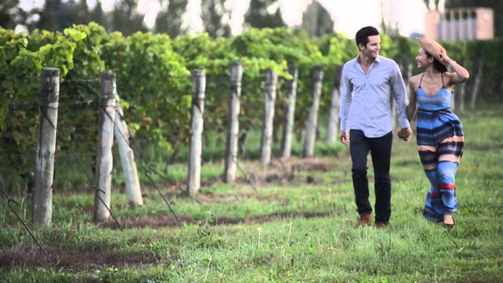 Wine Tasting Niagara, Healthy Living + Travel