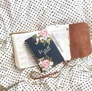 Be Still Journal www.healthylivingmom.com