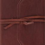 esv-journaling-bible - devotions and prayer