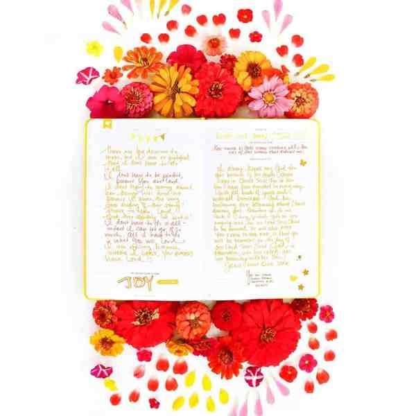Write the Word Journal | Cultivate Your Faith | Grow Your Faith Daily