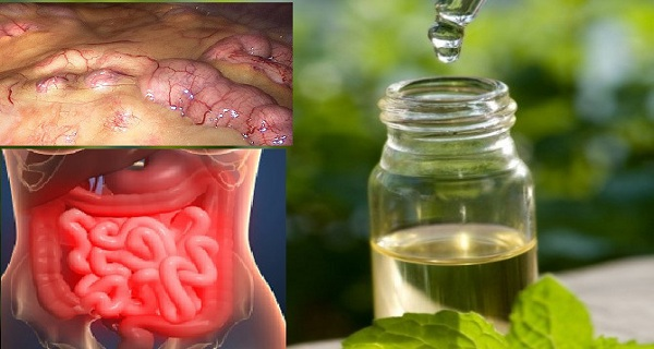 Remove All Toxins From the Body in 3 Days A Method That Prevents Cancer, Removes Fat and Excess Water!