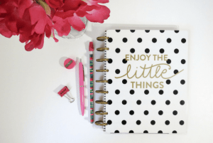 Free Personal Hair Diary and Planner