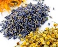 Three Dried Herbs