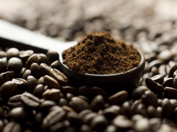 Image result for coffee powder