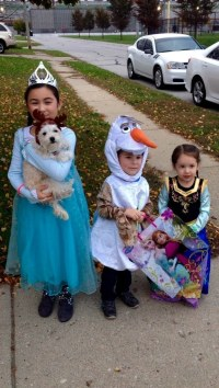 Halloween Costumes For Dogs | Healthy Paws
