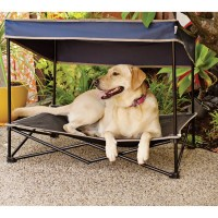Find Your Picky Pup the Perfect Dog Bed