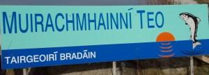 Muirachmhainni Teo