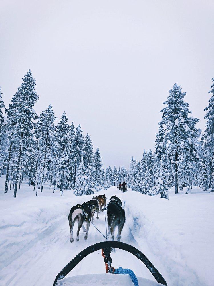 Lapland vakantie   5 x activiteiten in Lapland   Healthy Wanderlust