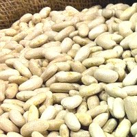 Health Benefits of Cannellini Beans